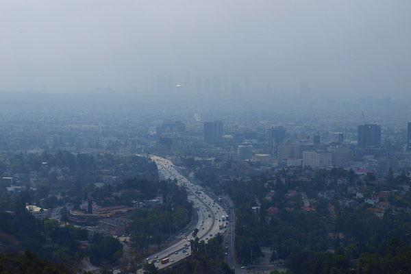 Los Angeles im Morgennebel (Foto NP)