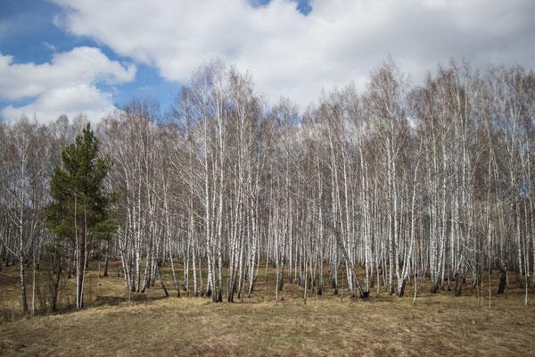 KlausDieter-Juni18mofo-Sibiren