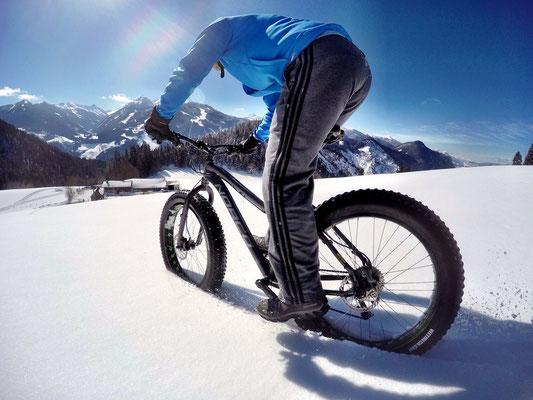 Alpine Fatbike Halseralm Powder