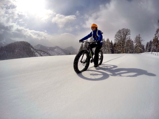 Alpine Fatbike Powder