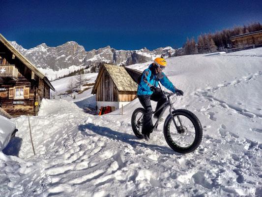 Alpine Fatbike Neustadtalm