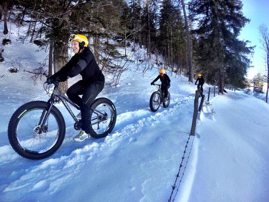 Alpine Fatbike Trail