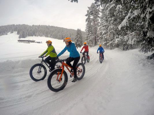 Alpine Fatbike Rösteralm
