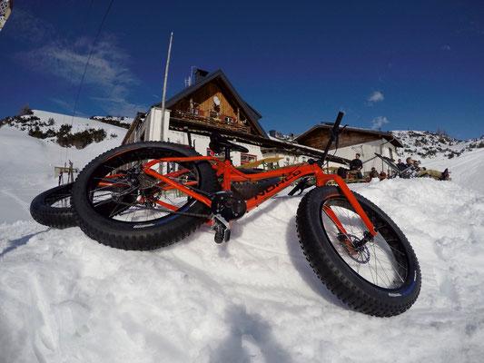 Alpine Fatbike Dachstein Gjaidalm