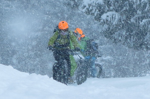 Alpine Fatbike Blizzard
