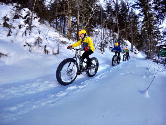 Alpine Fatbike Kids Trail
