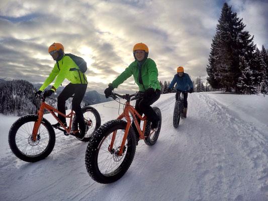Alpine Fatbike Sonnenalm