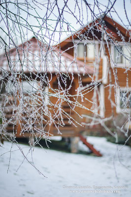 Морозний ранок. Верховина, Карпати. Сонячна садиба. Зимовий сад.