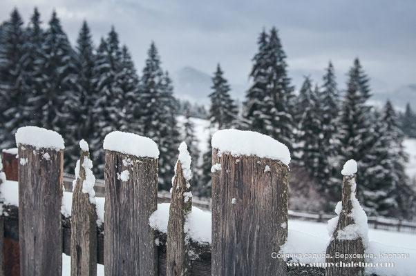 Зима у Верховині. Карпати