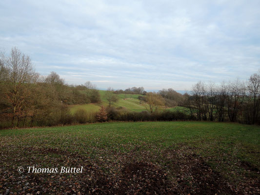 Landschaft bei Bischberg