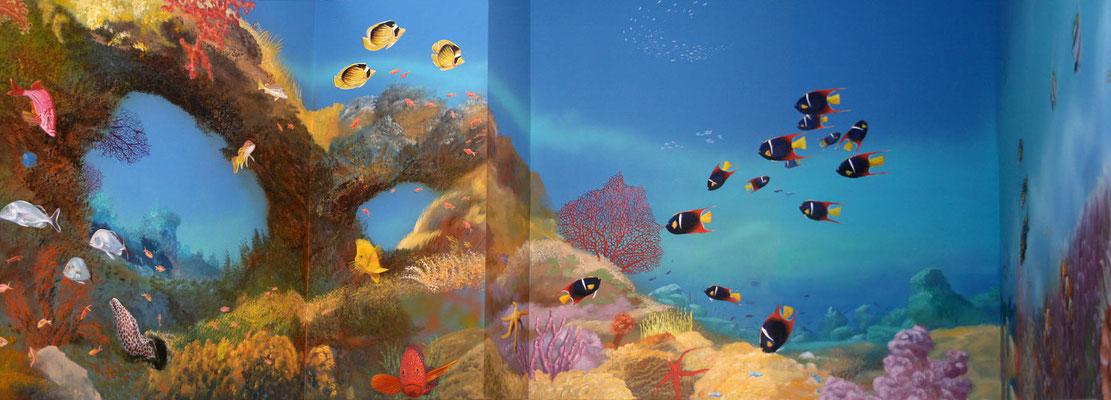 Großes Panorama vom Riff mit Fächerkorallen und tropischen Fischen.