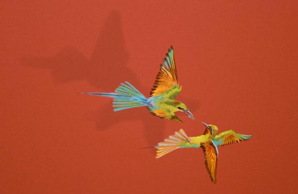 Detail Papageienpaar
