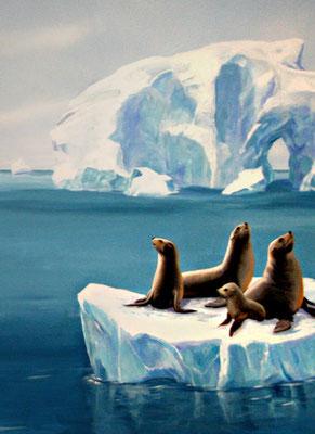 Die Robben ruhen sich aus.