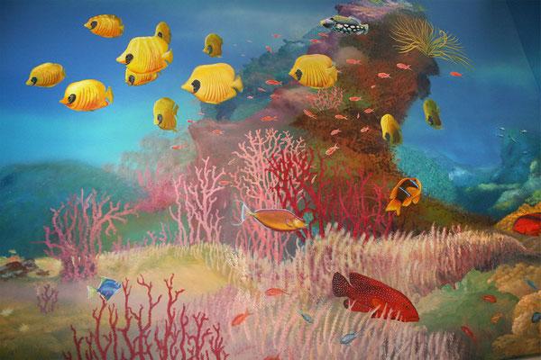 Bunte Fischwelt mit Juwel-Zackenbarsch und Falterfischen.