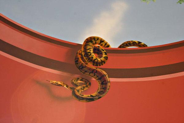 Detail Snake