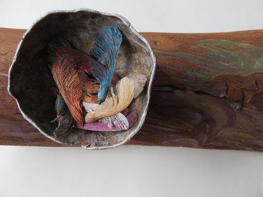 """Françoise Trotabas-  Le nid  :détail de la sculpture  """"Rouge gorge"""" - Ecorce d'eucalyptus - écorces de pin - demi coque d'une grenade - dans le nid : fruit de l'érable """"samare"""" -  peinture à l'huile - 55x16cm - 2015"""