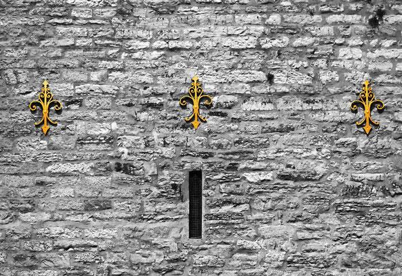 Drei Mauerblümchen (Ev. Kirche Mettmann), hochw. Fotoabzug 32x22 cm (limitierte Auflage) 95,- €
