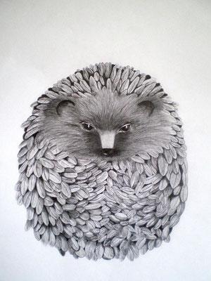 GREGOR Graphite on paper, 40 x 29,8 cm, 2008