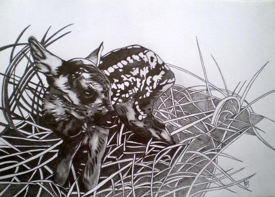 STILL MISSING Graphite on paper, 21 x 29,5 cm, 2011 (sold)