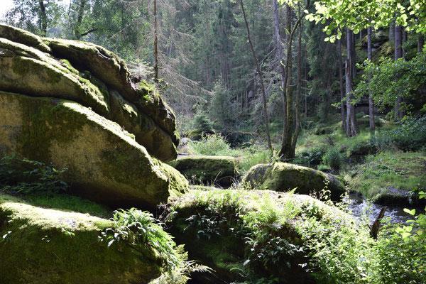 Naturschutzgebiet Waldnaabtal