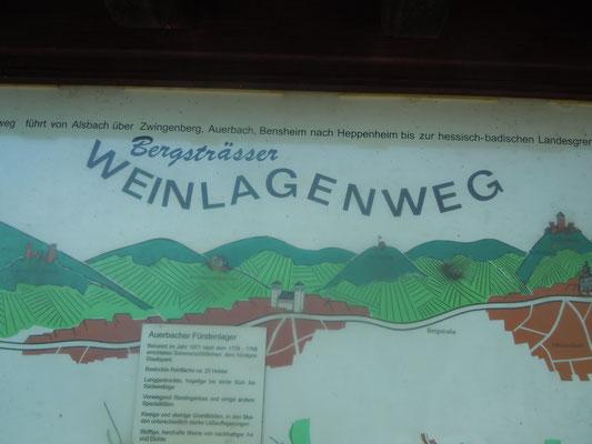 Am 1.Mai wird findet traditionell die Bergsträßer Weinlagen Wanderung statt, rund um Jahr geht es ruhiger zu (©odenwaldlust.de)