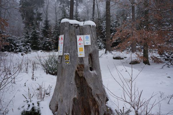 Hübsch verschneit - der Baumstumpf dient als Wegweiser für die zahlreichen Wanderpfade.