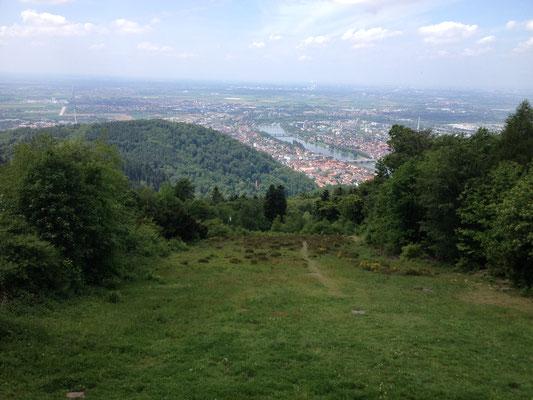 Der Köningsstuhl bietet einen Ausblick in die Rheinebene, bei gutem Wetter sogar bis ins Elsass. (©odenwaldlust.de)