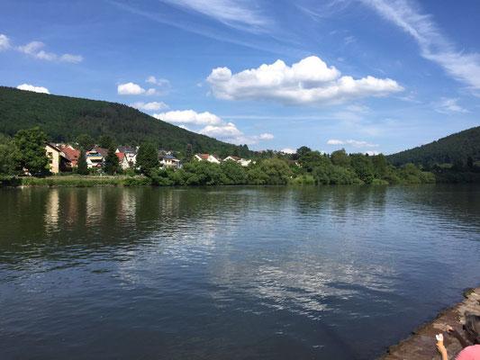 Neckargemünd lädt zum Bummel in der Altstadt und entspannen am Neckarufer ein. (©Beate Klein)