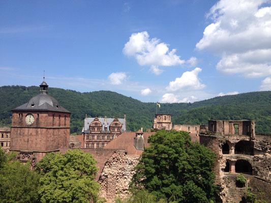 Die Tour startet mit einem Panoramablick auf das Heidelberger Schloss. (©Beate Klein)