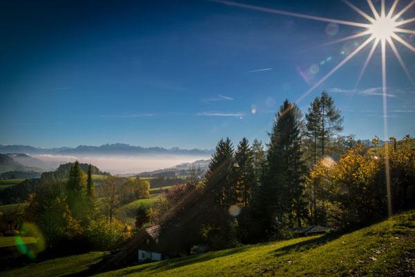 Blick in die Glarner Alpen vom Tösstal (Ghöch)