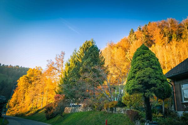Herbsttag im Tösstal