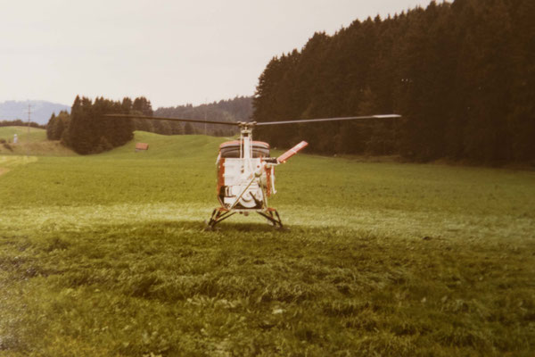 Fuchs Helikopter Schindellegi