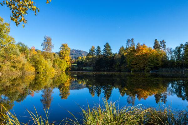 Herbststimmung Rinwiler Weiher