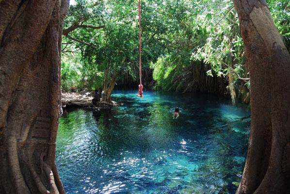Schwimmen an den Kikuletwa Hot Springs