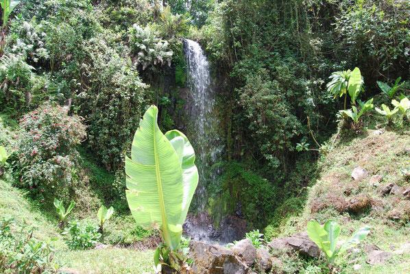 Wanderung in Marangu mit kleinem Wasserfall
