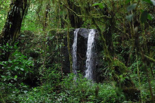 Kleiner Wasserfall auf der Marangu Route