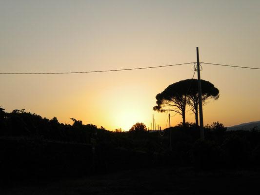 Sonnenuntergang am Ätna