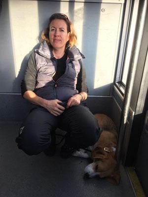 Sandra mit Barni (Beagle) während der Fahrt mit der Standseilbahn