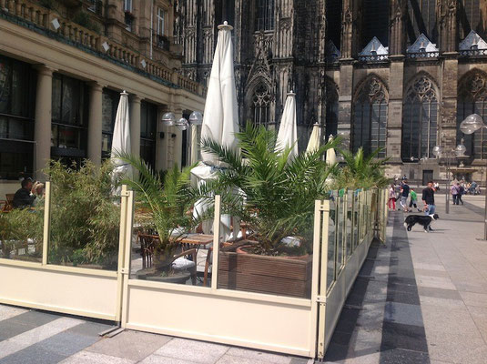 Windschutzsystem Cafe Köln Innenstadt