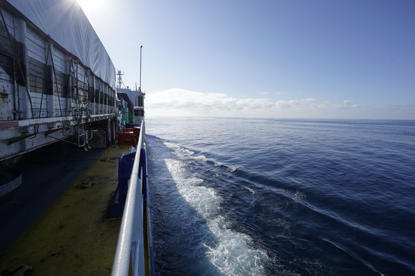 TMC Ferry