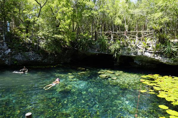 Cenote Niche-Ha
