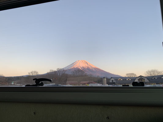 Dinner view Mt.Fuji