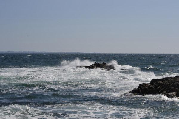 la Bretagne presqu'ile de quiberon côte sauvage