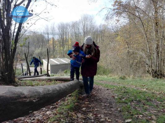 Kletterparcours Center Park Bostalsee (c) maximalplanet