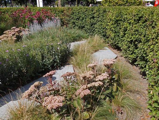 Lustgarten mit Herbststauden