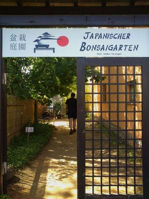 Eingang zum Bonsaigarten