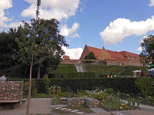 Blick zum Weinhang am Kloster Prenzlau