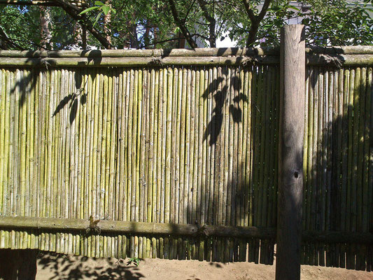 Material Bambus