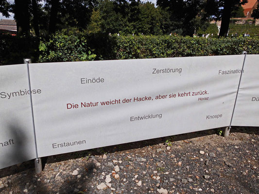 Zementgarten - Literaturfolien