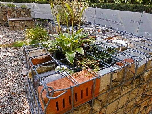 Zementgarten - Recyclinggabionen